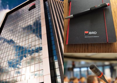 Conferinta business BRD